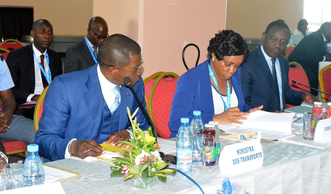 Second meeting on the prevention of bird and wildlife risk on airports, chaired by the Minister of Transport - Yaounde May 7, 2019.