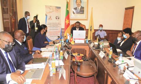 Troisième session ordinaire du Comité des ministres membres de l'ASSA-AC, Yaoundé le 13 avril 2021.